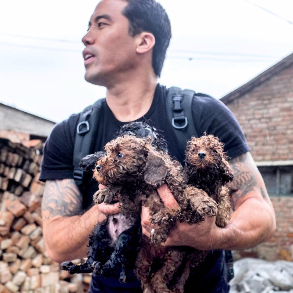 """Marc Ching, Rescuer of Dogs From the Meat Trade in Asia; and """"Vancouver Aquarium Uncovered"""" Filmmaker Gary Charbonneau Responds to Lawsuit Allegations"""